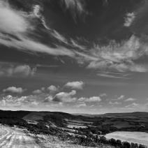 Tennyson Trail